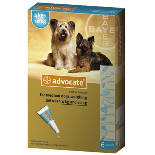 advocate-spot-on_600x600